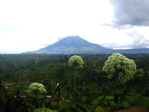 Volcano Sumatra Mount Sinabung